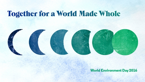 Essay on world environment day 2010