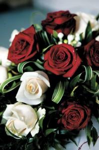 3_Flower_roses