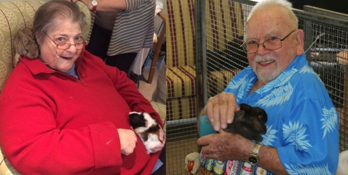 animal therapy at agewell