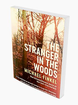 stranger than fiction analysis essays