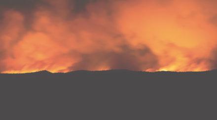 Bushfire, flames and smoke over the horizon, copy space