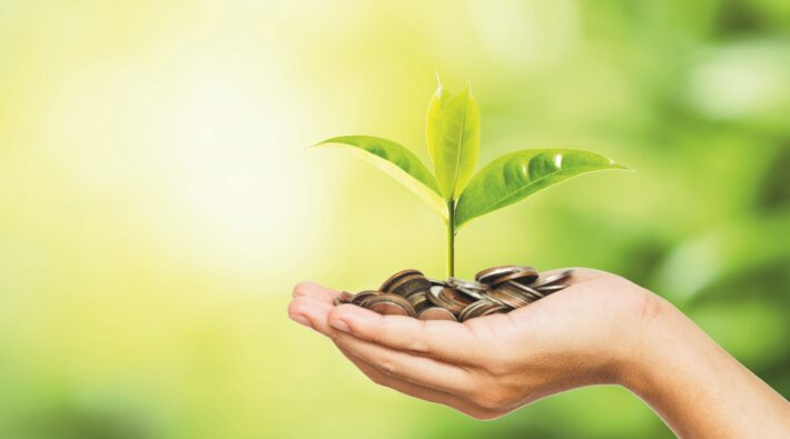 Man hand holding coins and tree look like as planting on  greenery background and sunlight for planting.Growth saving and investment concept.